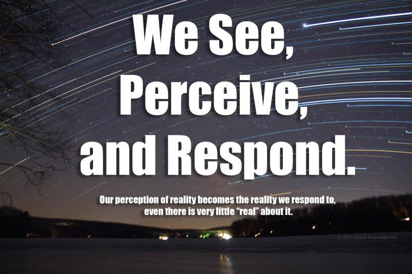 See, Perceive, Respond